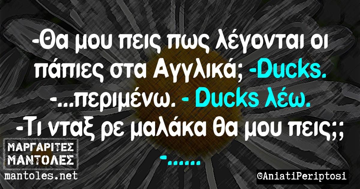 -Θα μου πεις πως λέγονται οι πάπιες στα αγγλικά;;; -Ducks. - ....... Περιμένω. -Ducks λέω. -Τι νταξ ρε μαλάκα,θα μου πεις;; -....