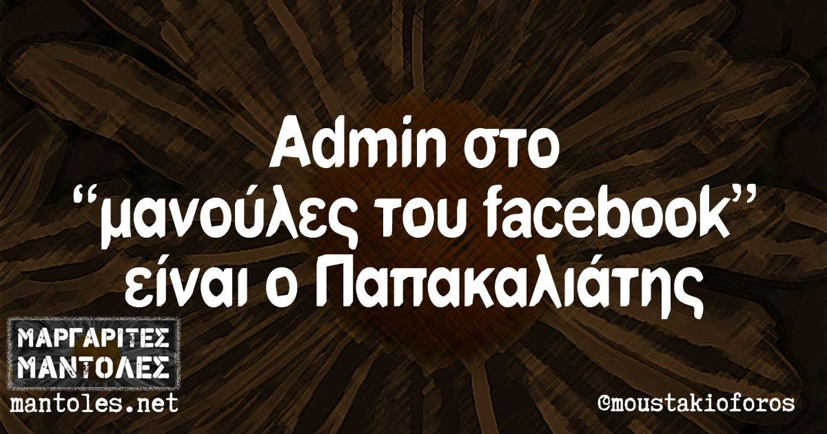 "Admin στο ""μανούλες του facebook"" είναι ο Παπακαλιάτης"