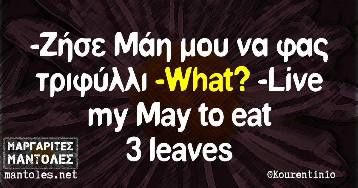 -Ζήσε Μάη μου να φας τριφύλλι -What? -Live my May to eat 3 leaves