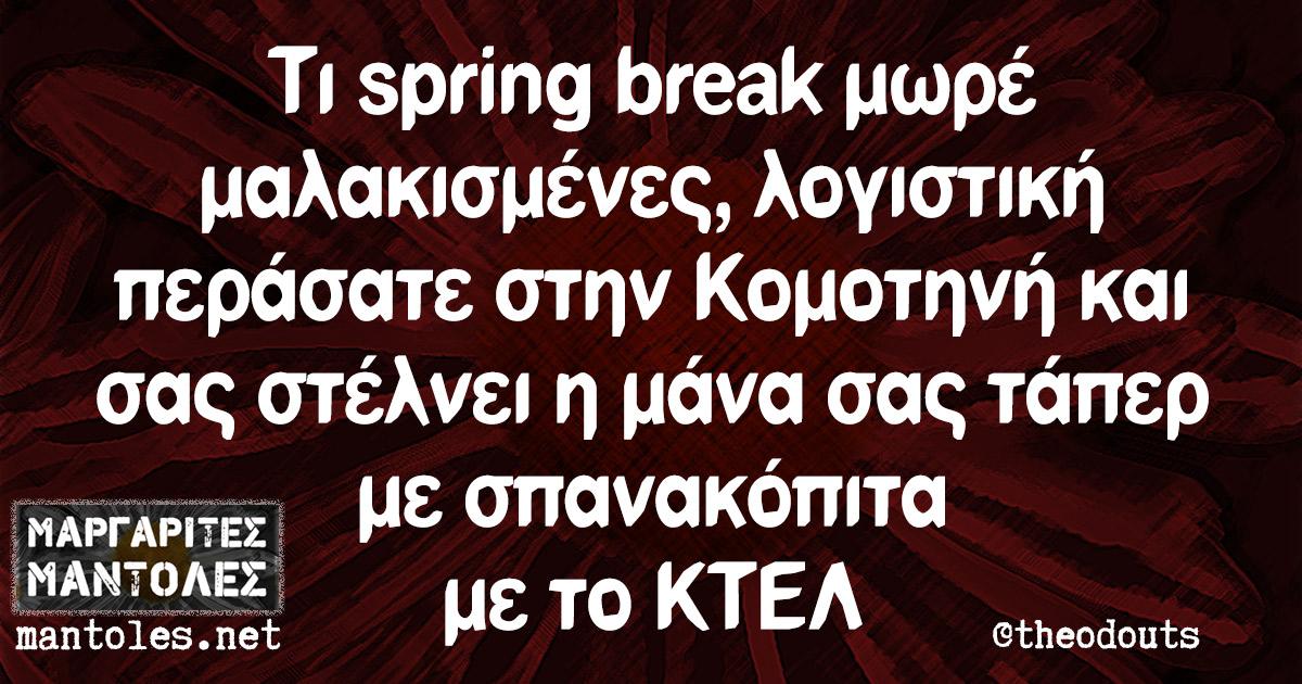 Τι spring break μωρέ μαλακισμένες, λογιστική περάσατε στην Κομοτηνή και σας στέλνει η μάνα σας τάπερ με σπανακόπιτα με το ΚΤΕΛ