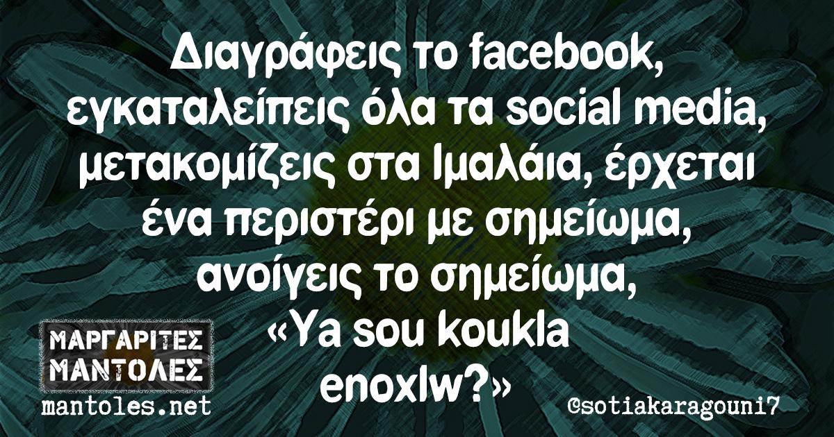 Διαγράφεις το facebook, εγκαταλείπεις όλα τα social media, μετακομίζεις στα Ιμαλάια, έρχεται ένα περιστέρι με σημείωμα, ανοίγεις το σημείωμα, «Ya sou koukla enoxlw?»