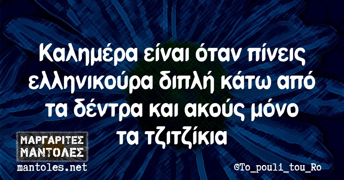 Καλημέρα είναι όταν πίνεις ελληνικούρα διπλή κάτω από τα δέντρα και ακούς μόνο τα τζιτζίκια
