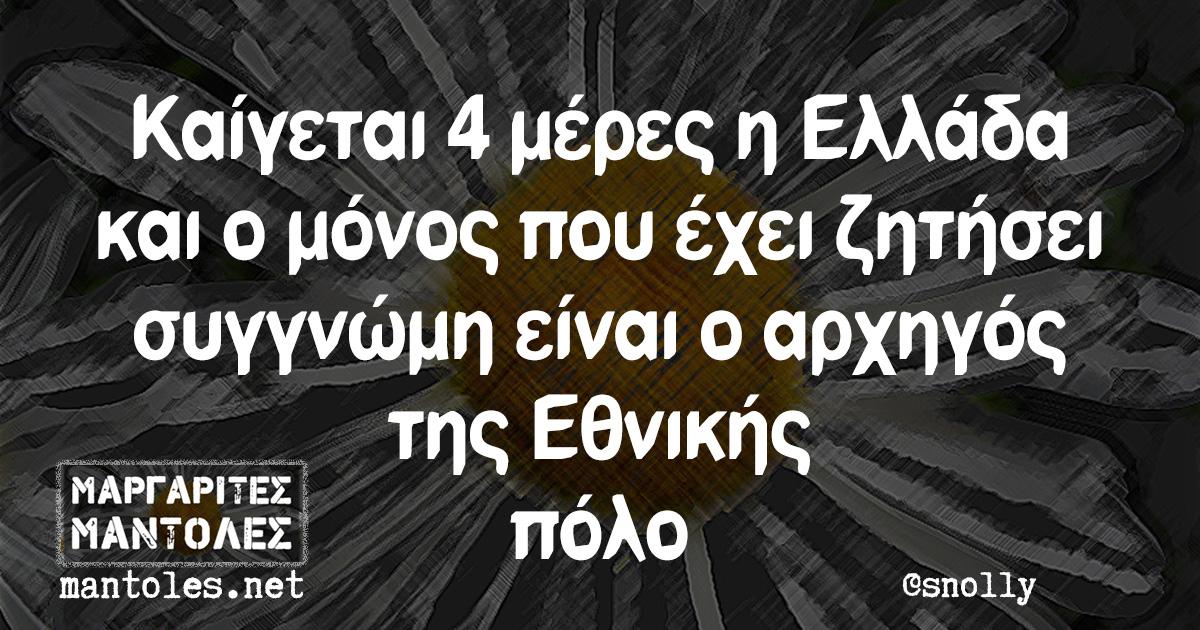Καίγεται 4 μέρες η Ελλάδα και ο μόνος που έχει ζητήσει συγγνώμη είναι ο αρχηγός της Εθνικής πόλο